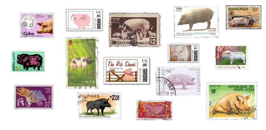 sello cerdo mundo